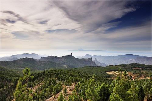 PhotoLas Palmas - Gran Canaria 4